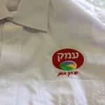 קיפול ואריזת חולצות העובדים